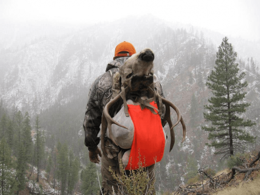 hunting day pack with rifle