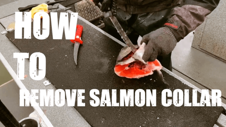 How to Remove Salmon Collars