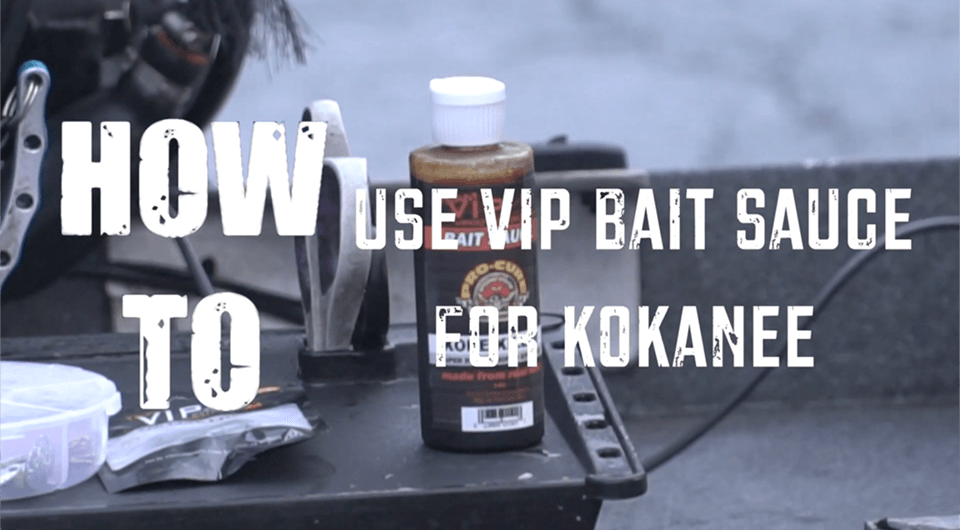 how to use vip bait sauce for kokanee