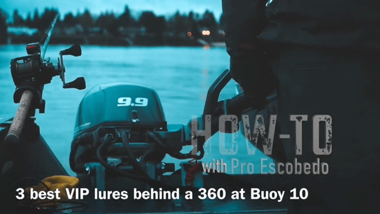 Three Best Lures Behind a 360 at Buoy 10